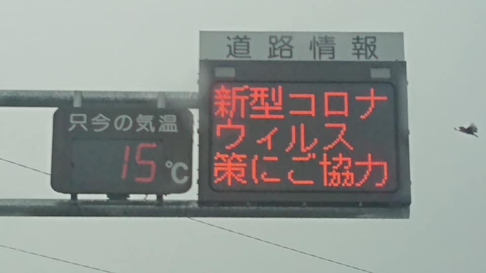 軽井沢で苗の手入れ