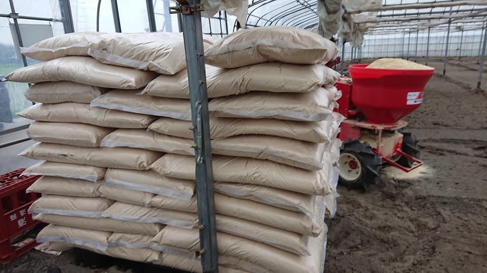いちごのハウスに米ぬかを散布