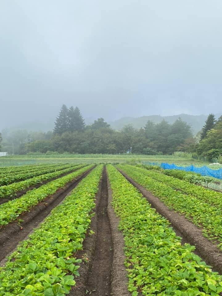 霧がかった軽井沢