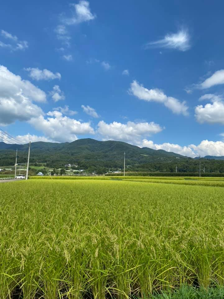 藤岡は良い天気