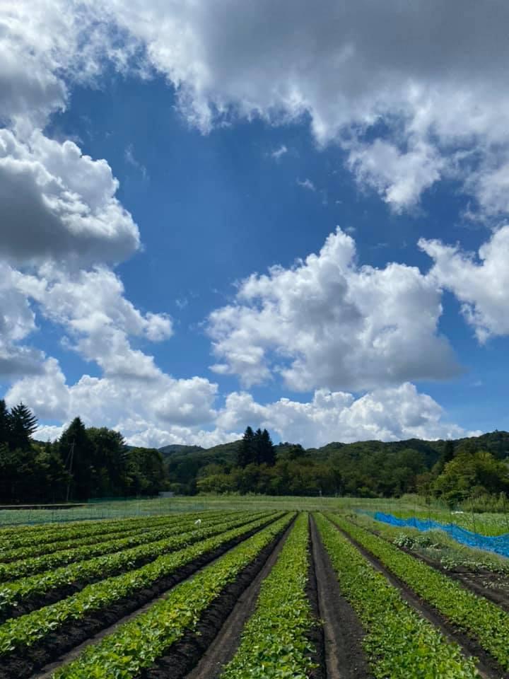軽井沢は気温25℃ 晴れ