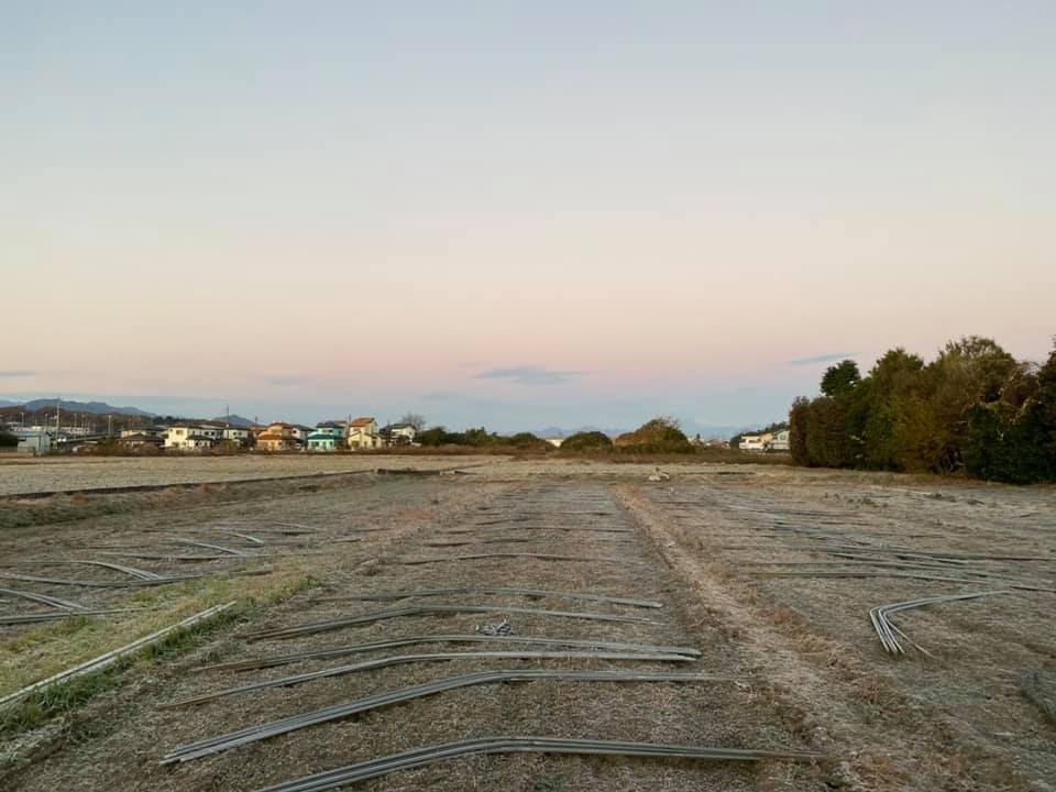 霜が降りて畑は真っ白